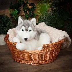 peluche geante chien husky